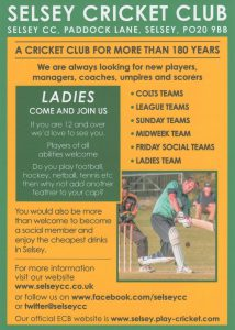 Come and play cricket for Selsey
