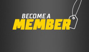 Become a member of Selsey Cricket Club